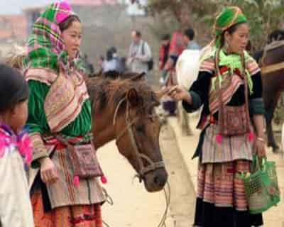 Story about unique horse-drawn carriage in Bac Ha | Sapa Tours in vietnam
